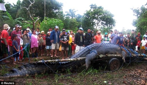 Local residents gather around the crocodile, which is believed to have killed a fisherman