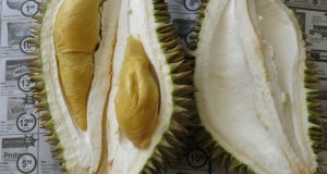The other durian