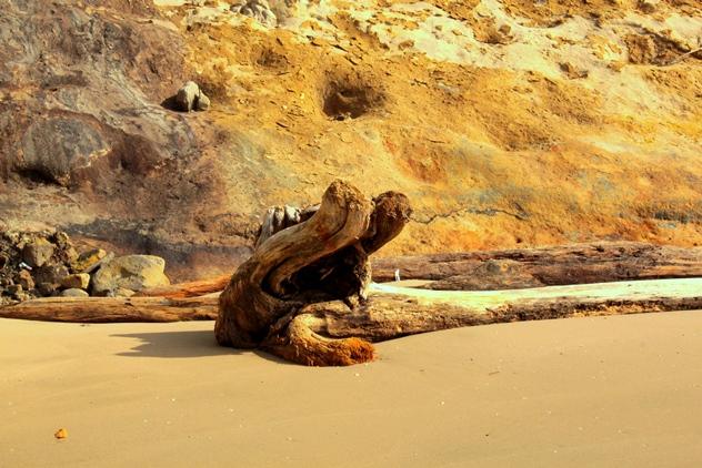 Tusan Beach 071