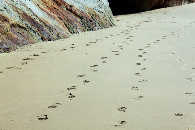 Leave nothing behind but your footprints.