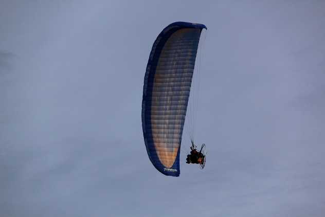 The paraglider in action
