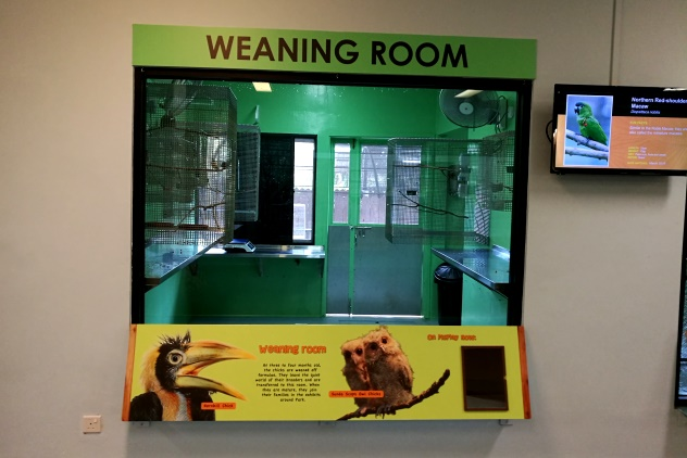 One of the two weaning rooms
