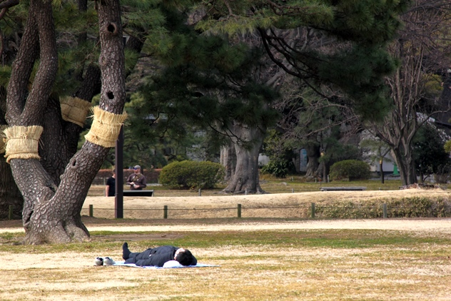 A Japanese enjoying an afternoon nap