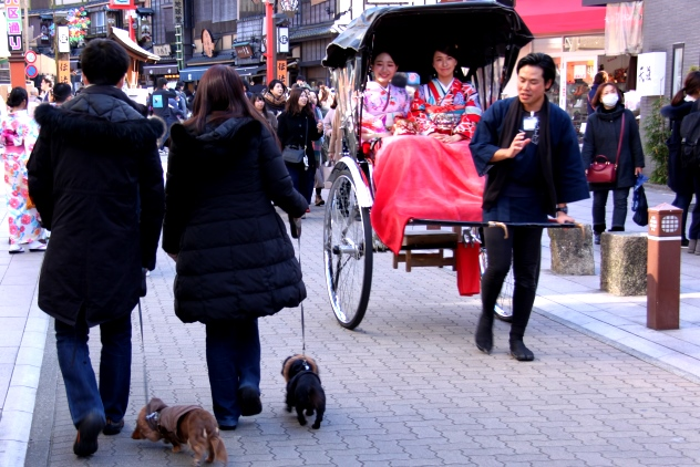 Rickshaws are a common sight in Asakusa