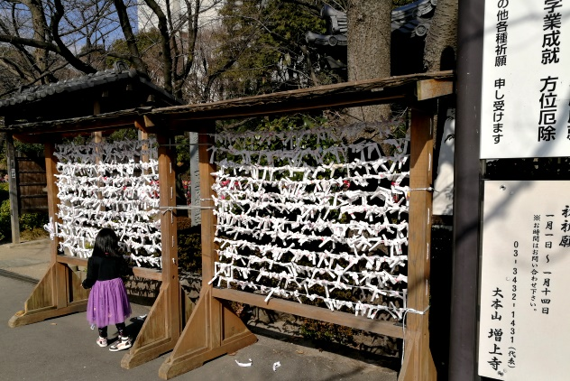 Little girl at a rack for tying omikuji strips